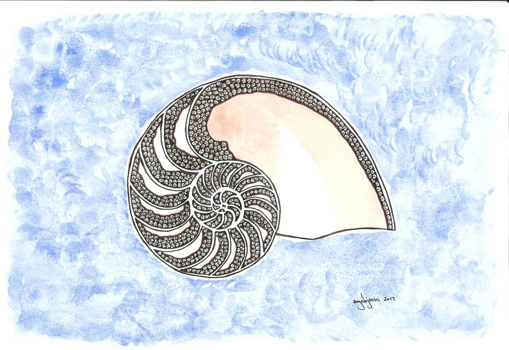 Nautilus of Doom.  Watercolor and ink