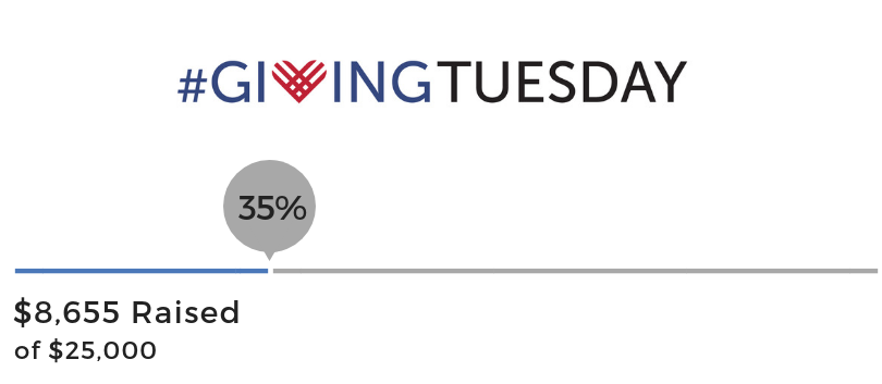 Giving Tuesday Donation Progress (9).png