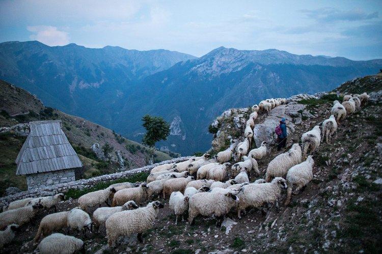 Photo of Lukomir by Ziyah Gafic / VII Photo Agency