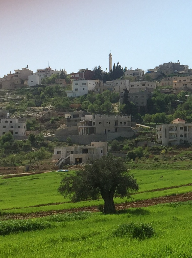 1-typical-palestinian-village_33776996886_o.jpg