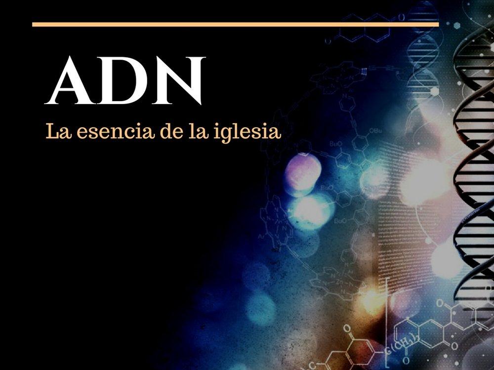 Nuestro ADN-5.jpg