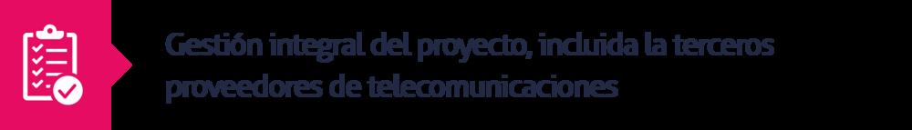 5.Gestión integral del proyecto, incluida la terceros proveedores de telecomunicaciones