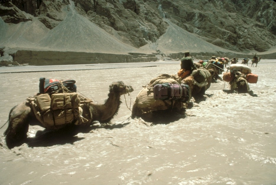 Camel+Train+crossing+the+Shaksgam+River+1990.jpg
