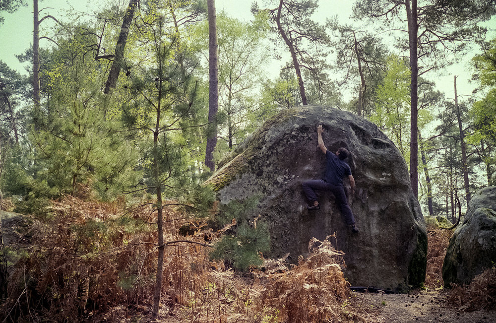 bram-berkien-fontainebleau-on-film-15.jpg
