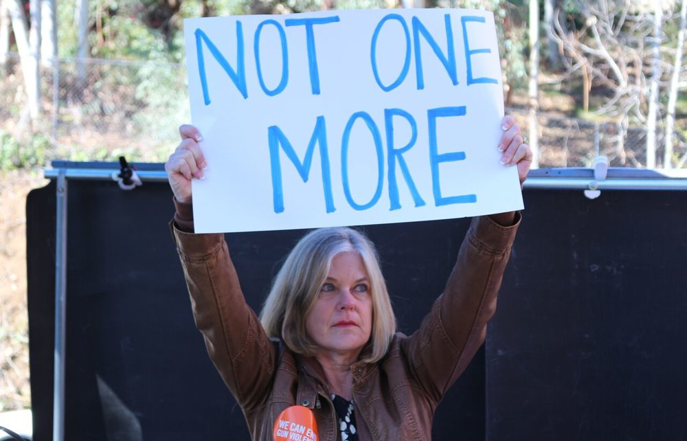 NOT ONE MORE Rally - Vista - February 20, 2018