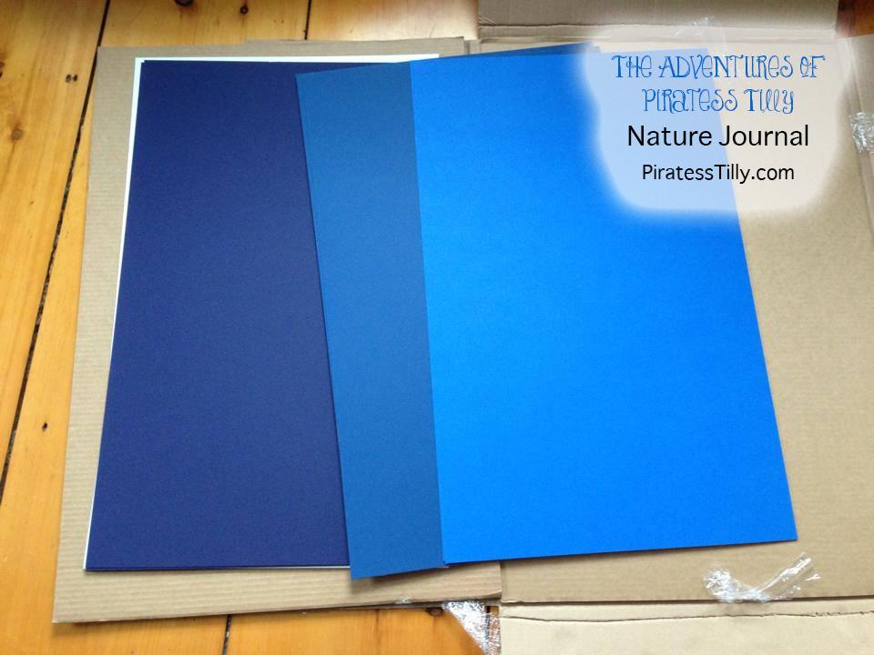 piratess-tilly-nature-journal-3c.jpg