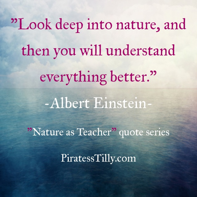 "Adventures of ""Piratess"" Tilly picture book, Albert Einstein Quote"