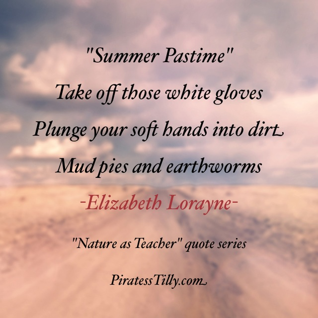 "Adventures of ""Piratess"" Tilly picture book, Elizabeth Lorayne Summer Pastime Haiku"