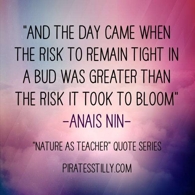 "Adventures of ""Piratess"" Tilly picture book, Anais Nin Quote"