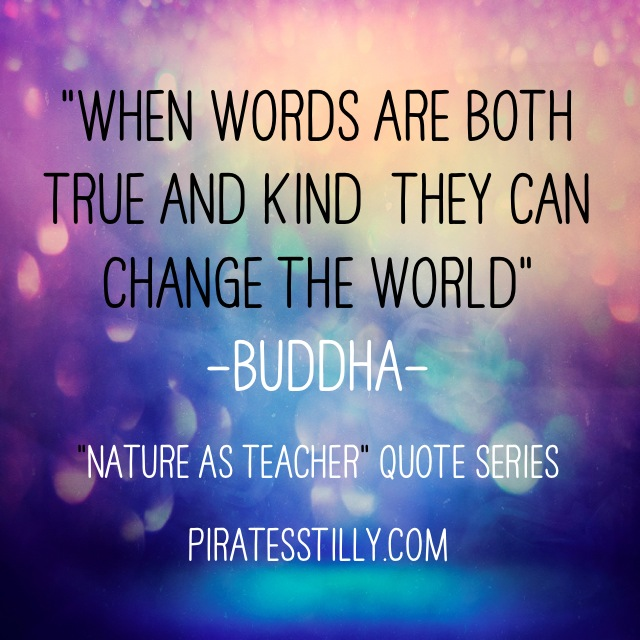 "Adventures of ""Piratess"" Tilly picture book, Buddha Quote"