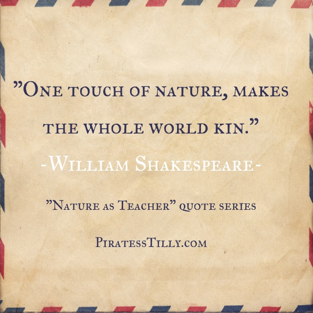 "Adventures of ""Piratess"" Tilly picture book, William Shakespeare Quote"