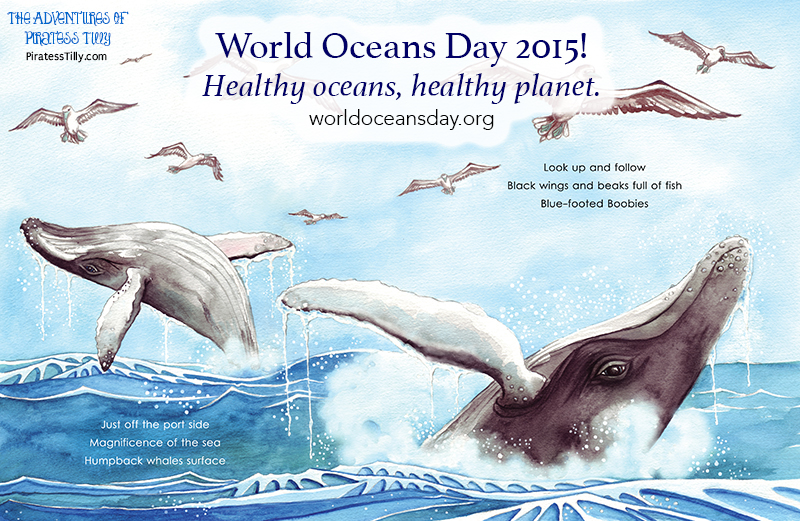 Piratess Tilly World Oceans Day whale pages