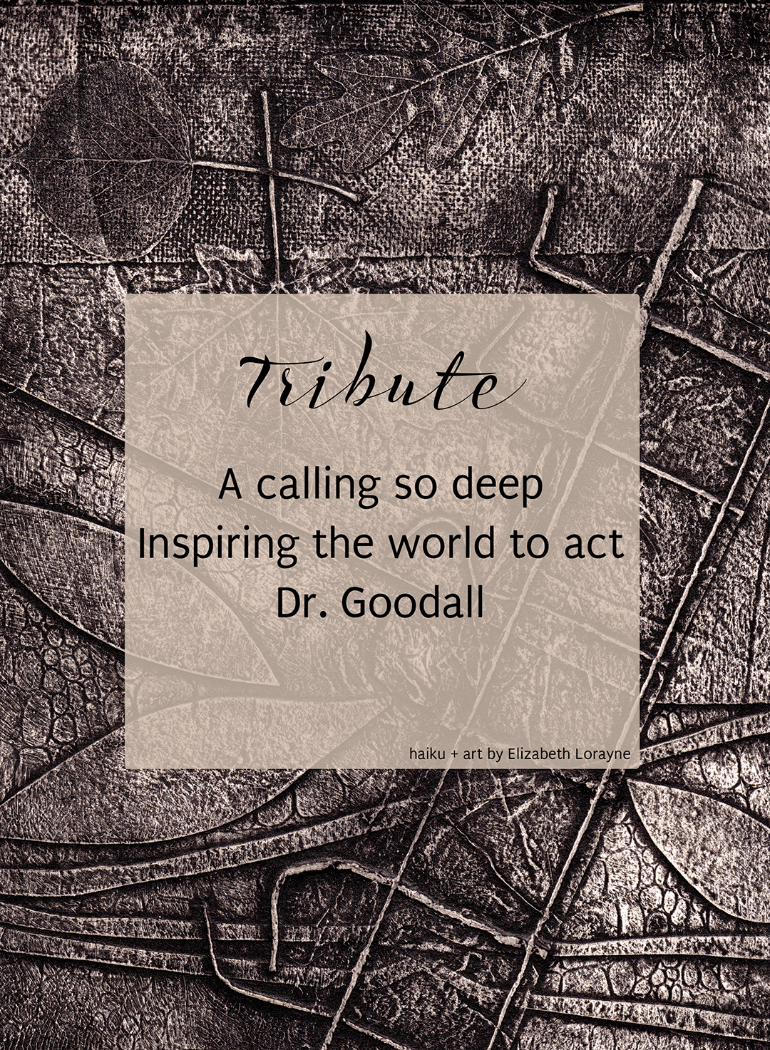 Dr-Jane-Goodall-Tribute-Birthday-Haiku