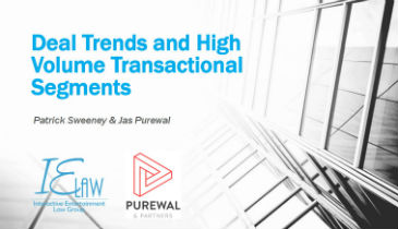 'Deal Trends and High Volume Transnational Segments'  by Patrick Sweeney & Jas Purewal