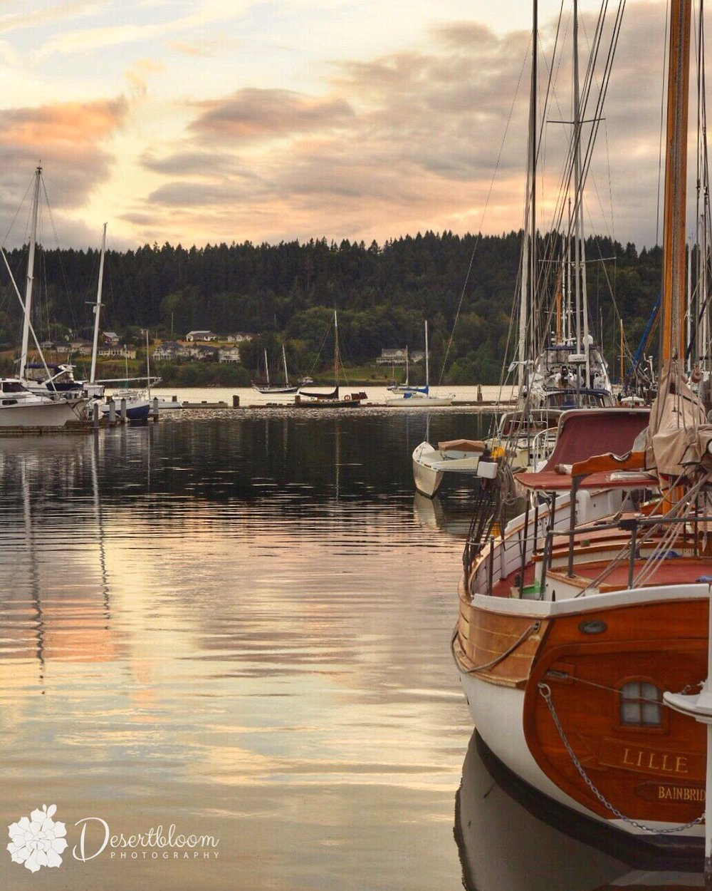 Sailboats, Sunsets, Paulsbo Marina