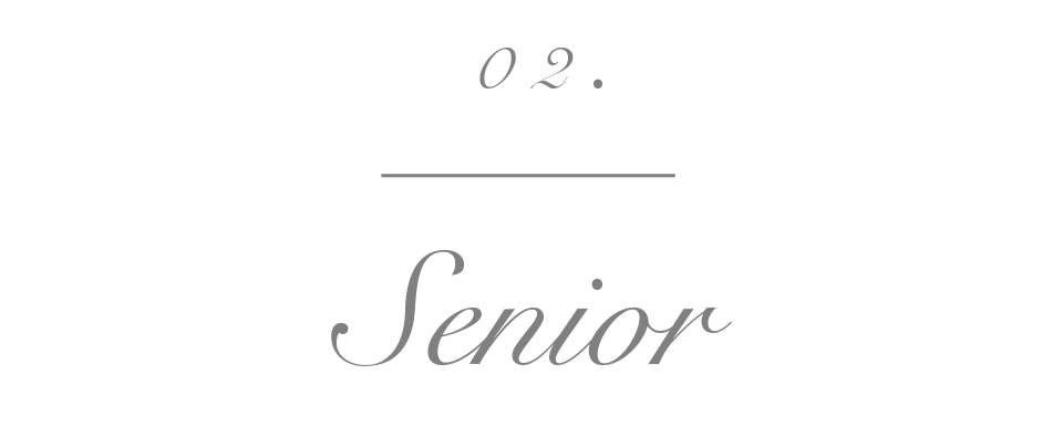 seniorbutton-2.jpg