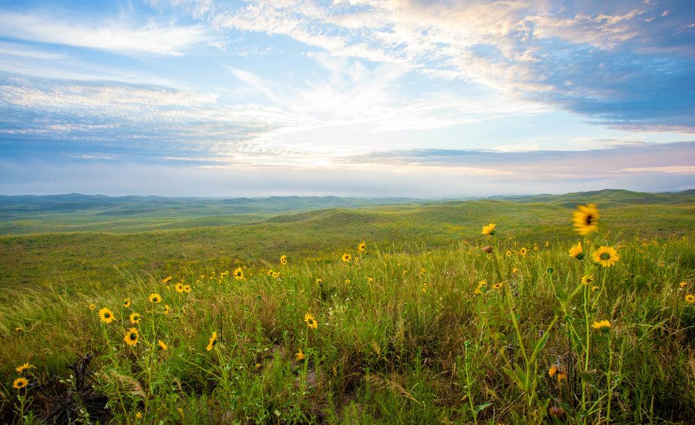 Great Plains.jpg