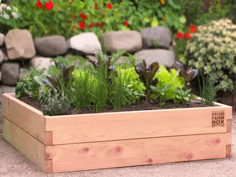 30% OFF - THIS SATURDAY select MiniFarmbox Cedar Raised Beds. Take advantage of this sale to get your garden going.
