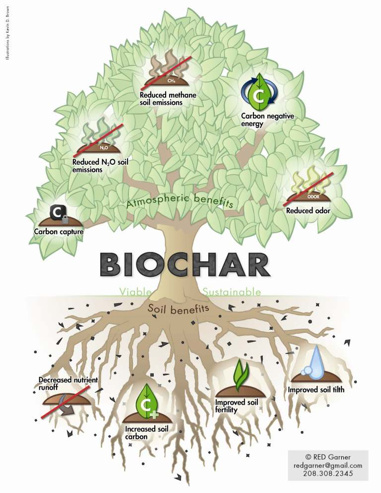What is Biochar? - Biochar is Biological Charcoal soil supplement which acts as a virtual sponge that retains water and nutrients at the soil level.  Many feel that Biochar could be the answer to restore depleted soils, depleted microbial colonies, and capture nutrients and moisture to nourish and replenish our precious soil and restore our ecology.