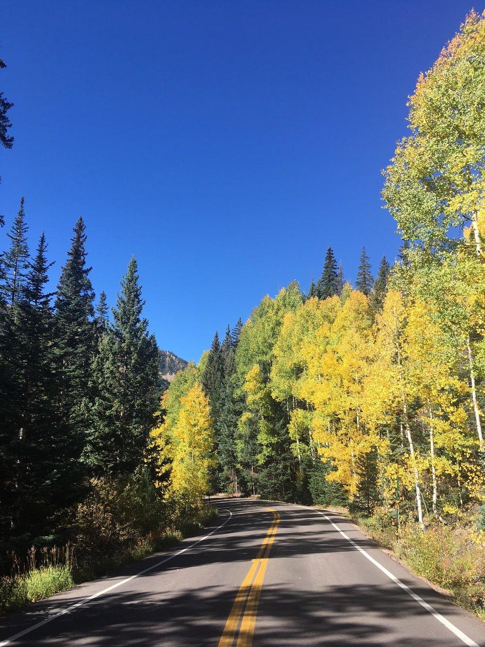 9.19.17 road & yellow.JPG