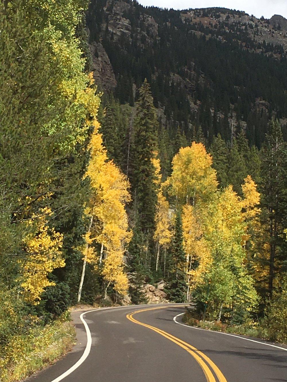9.22.17 road & yellow.jpg