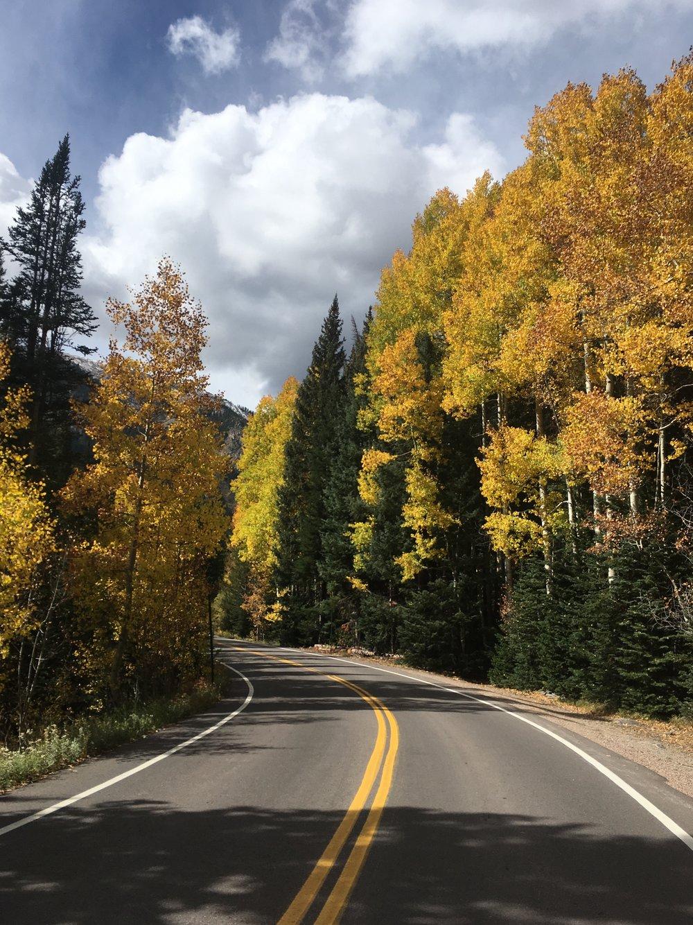 9.25.17 road yellow etc..jpg