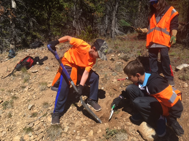 Aspen Middle School tree planters