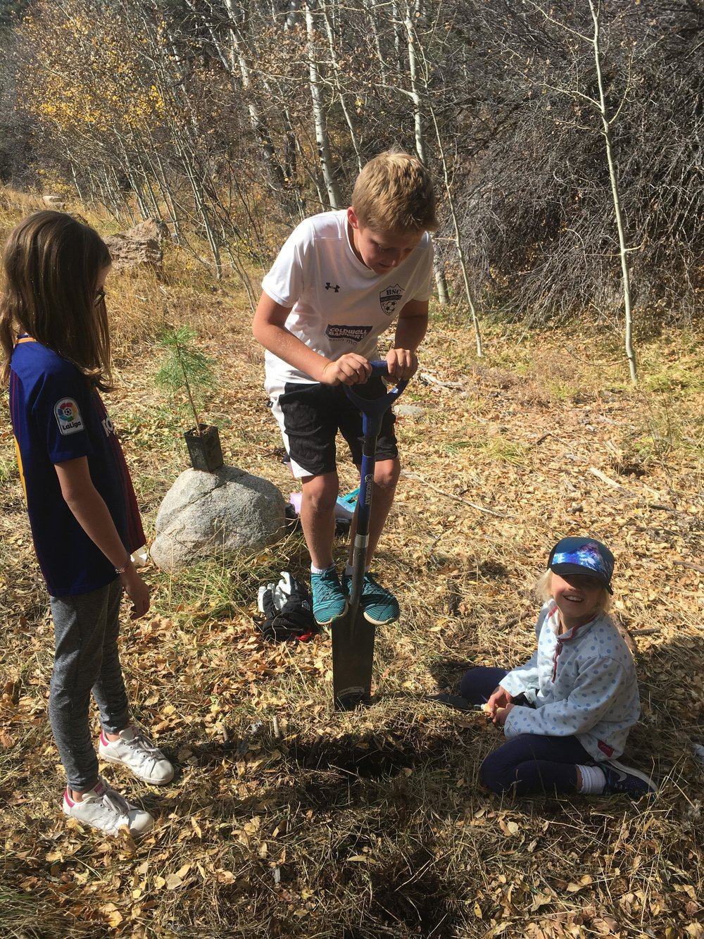 Aspen Country Day tree planters
