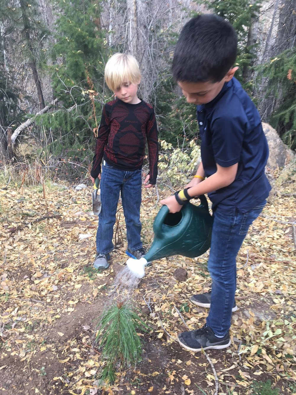 Aspen Country Day third graders watering their newly-planted tree