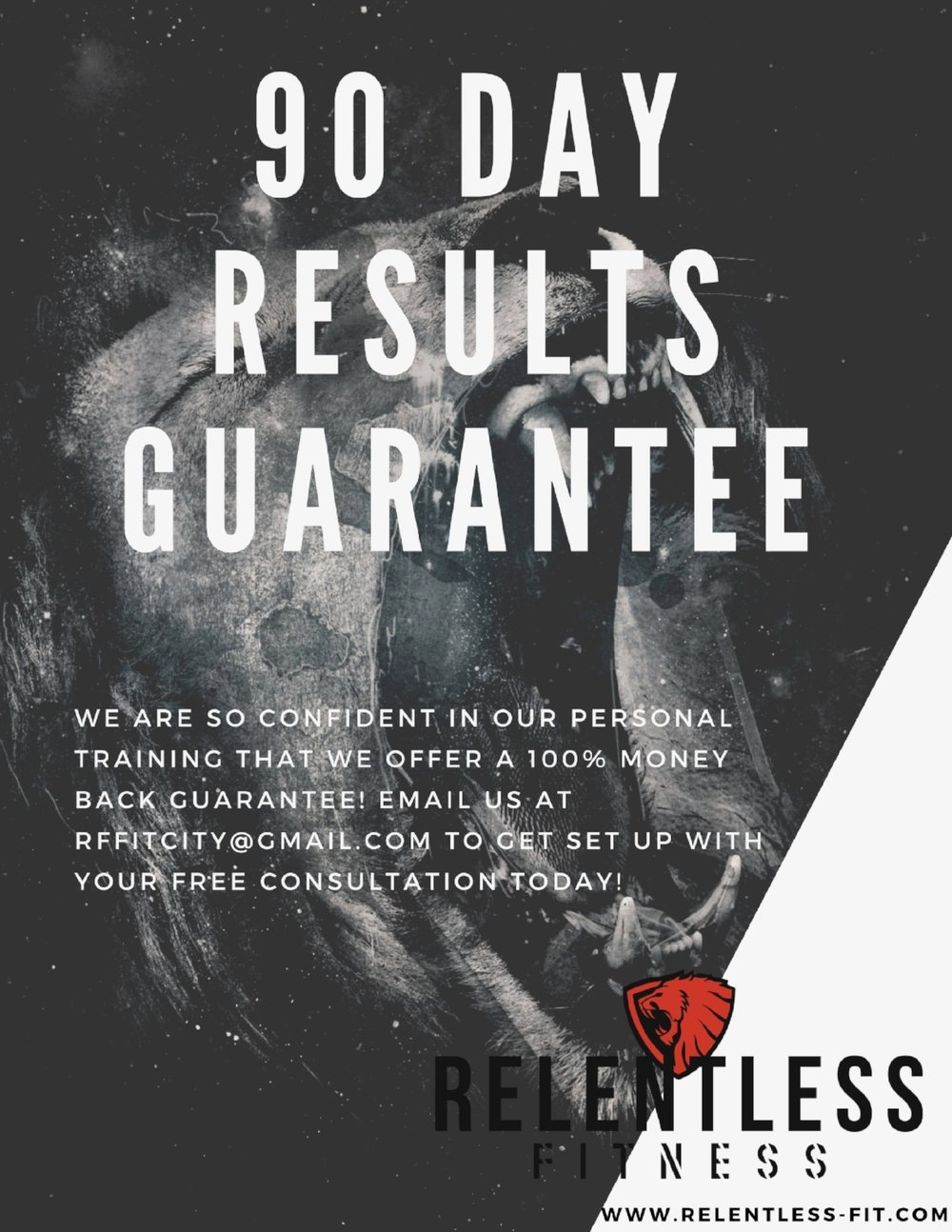 90 day results guarantee.jpg