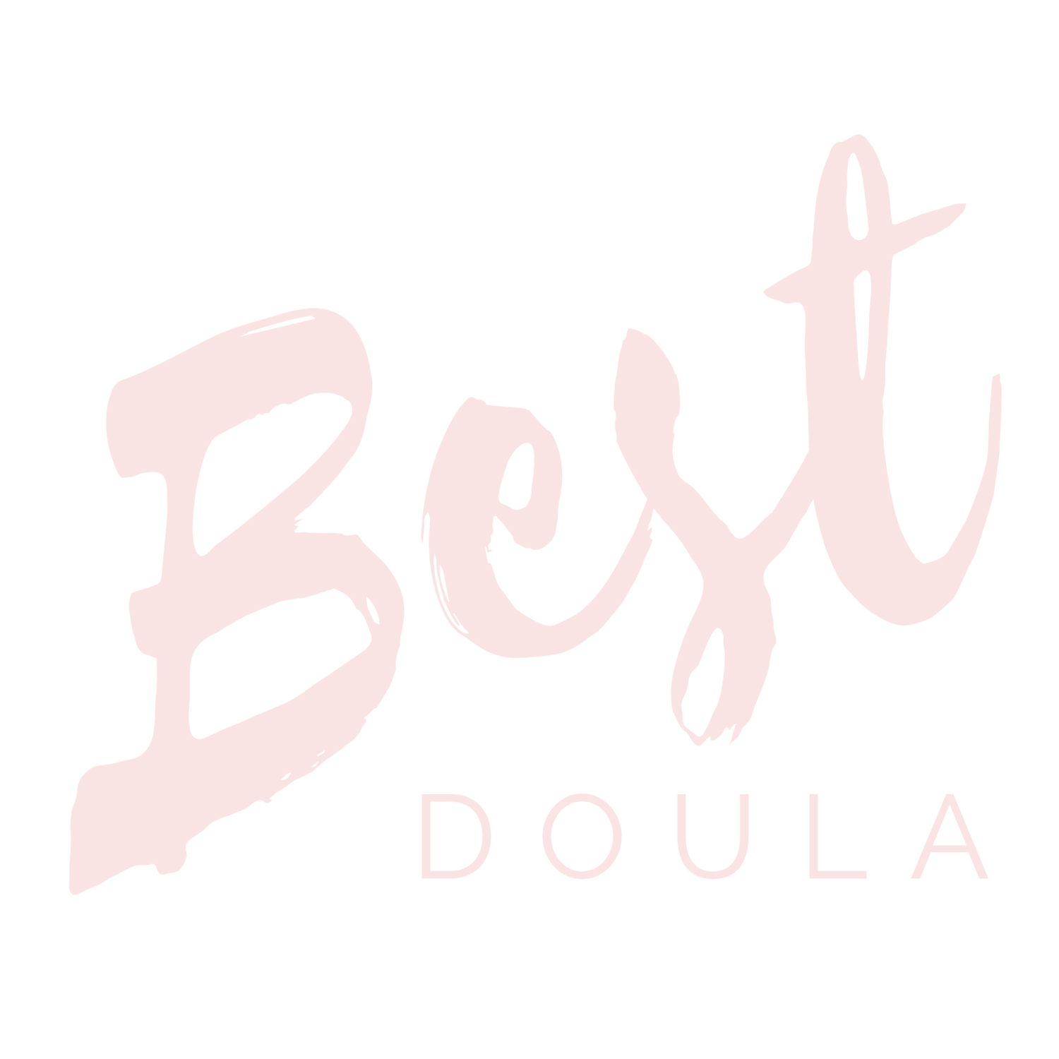 Best Doula Training