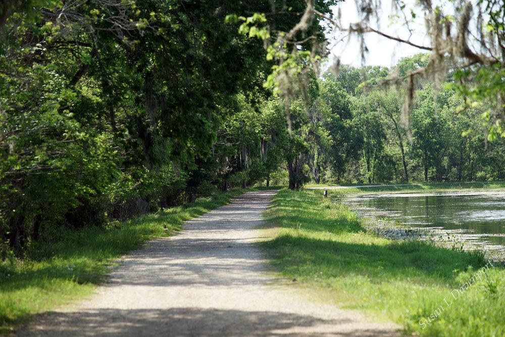The Lake Path - Photo by Susan L. Davenport