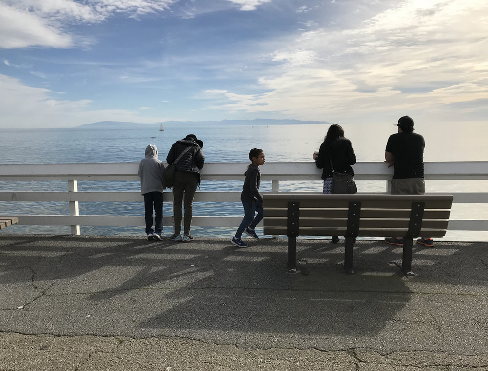 Humans lounging and taking in the views from the Santa Cruz Wharf