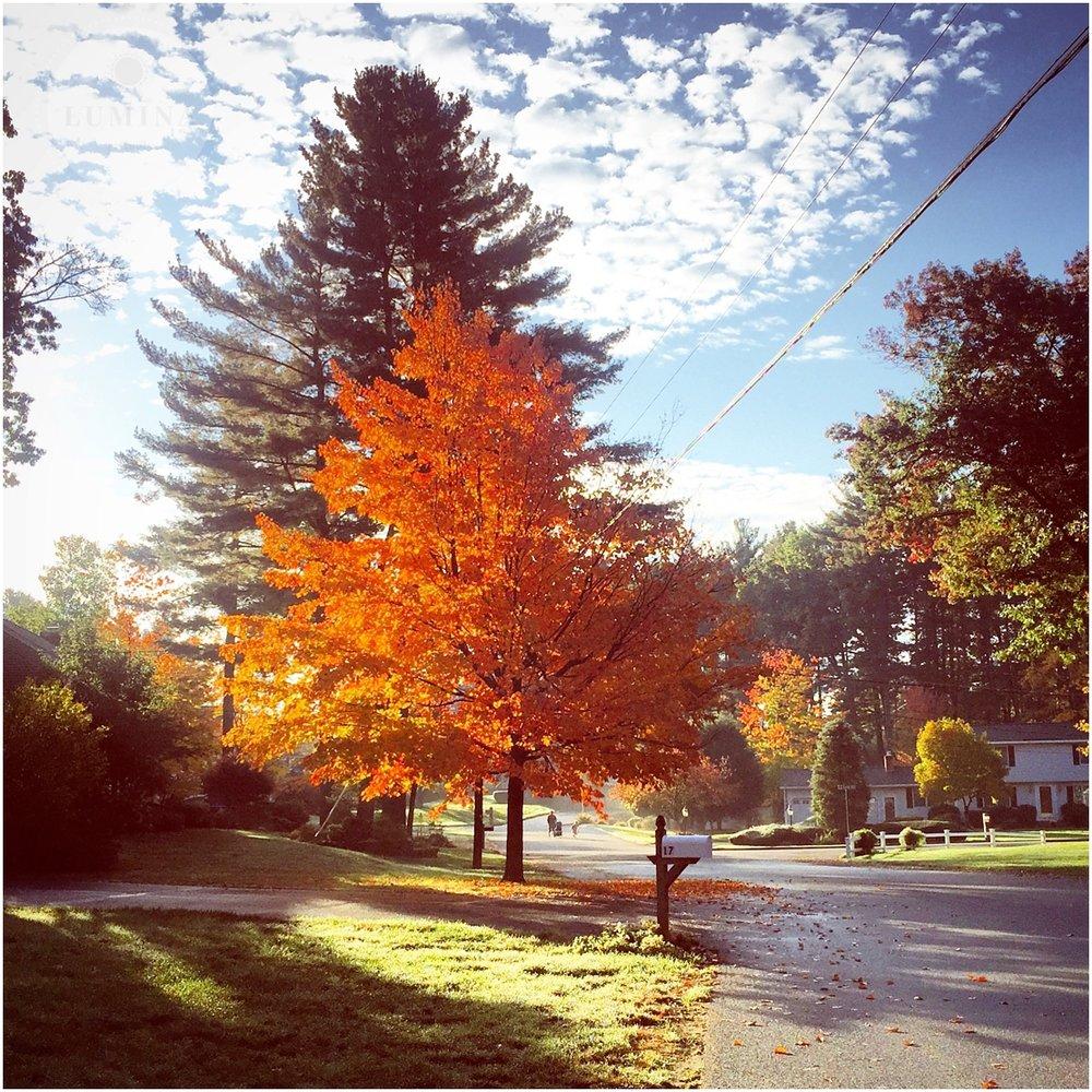 New Hampshire Photographer_004 (2).jpg