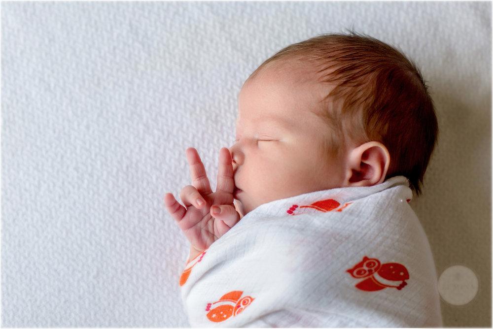New Hampshire Newborn Photographer_004.jpg