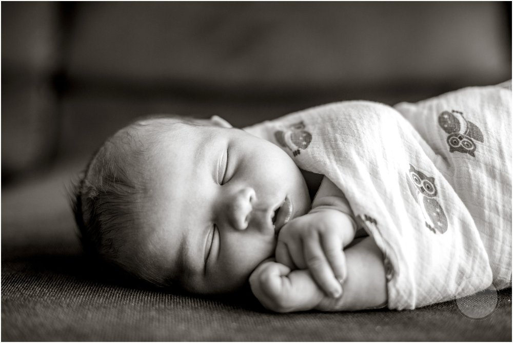 New Hampshire Newborn Photographer_005.jpg