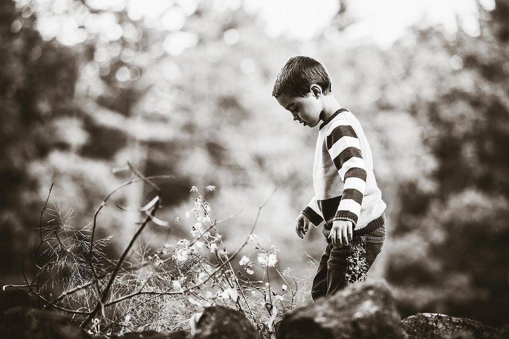 New Hampshire Photographers_016.jpg
