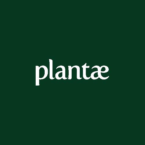 plantae.png