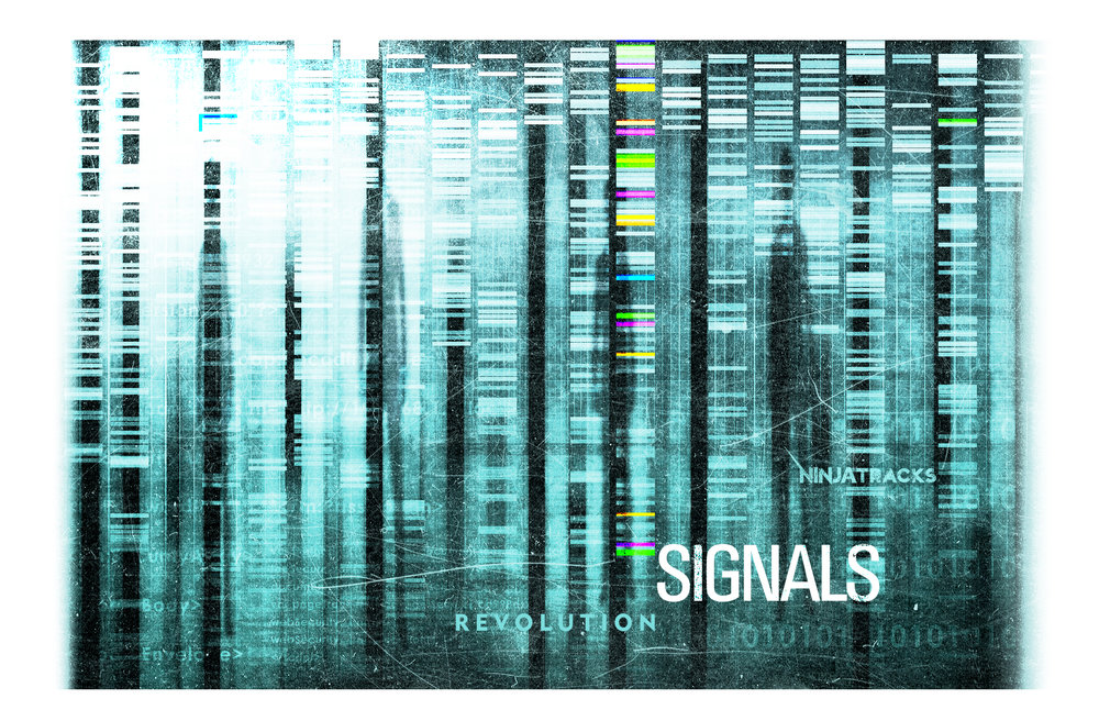 Signals 2440x1600 Desktop.jpg