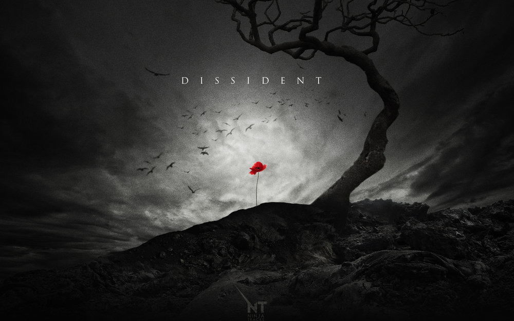 Dissident-Poppy-2560x1600.jpg