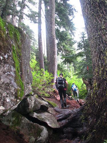 Binkert Trail.jpg