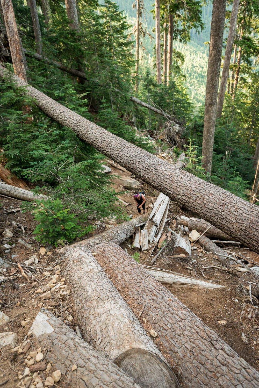 Binkert Trail 2.jpg