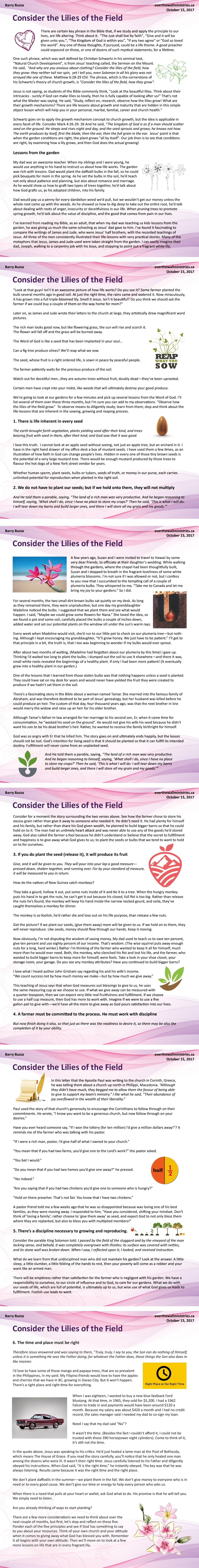 #8_consider the lilies of the field_ALLPAGES.jpg