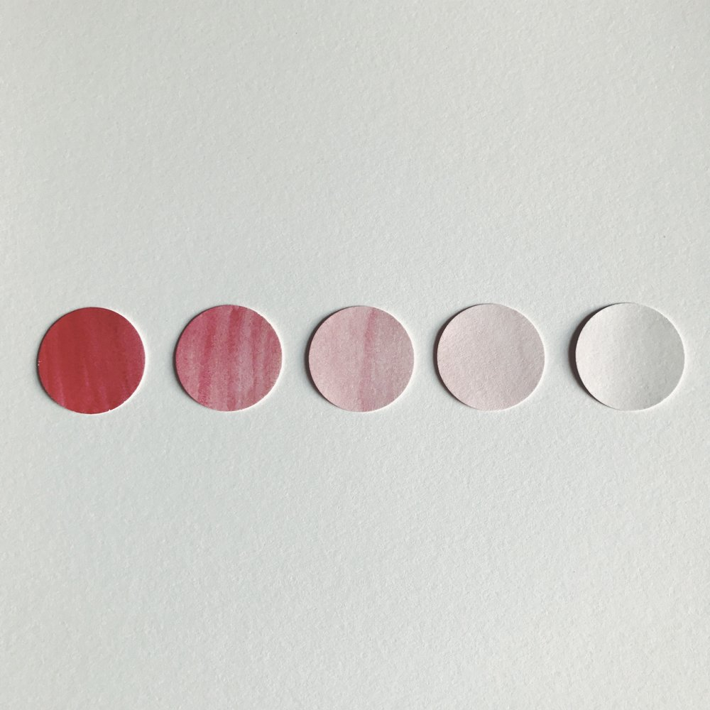 This is an example of tone. The red hue changes to different shades of pink when white is added.