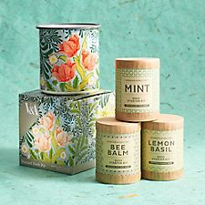 Mothers Day Green Thumb Bundle