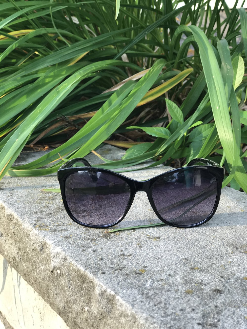 Sunglasses by front flowers