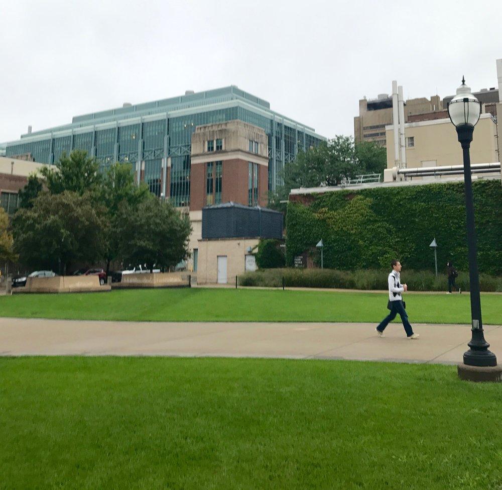 University of Minnesota Coffman Courtyard