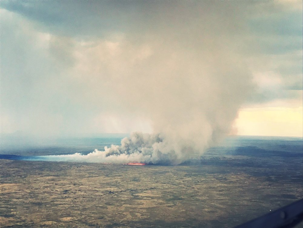 Driven by strong winds, the Wildhorse Fire rapidly spread across the rangeland. -