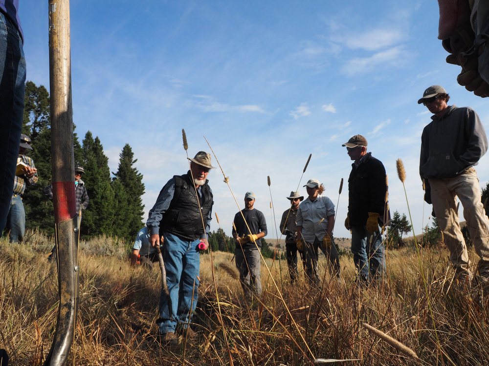 Pictured holding his iconic walking stick, Zeedyk is a riparian restoration expert here to teach Montana managers his unique methods for repairing meadows like this one in sagebrush country.