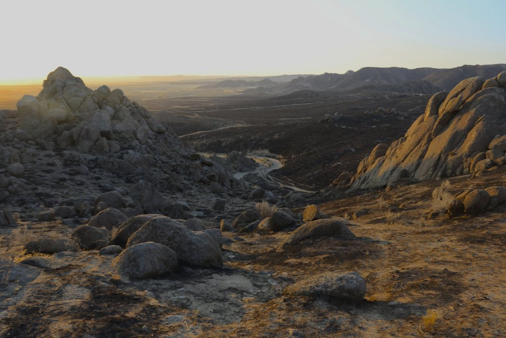 ID_Soda Fire rock and soot_A. Hedrick, BLM.jpg